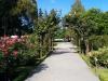 Durch den Botanischen Garten...