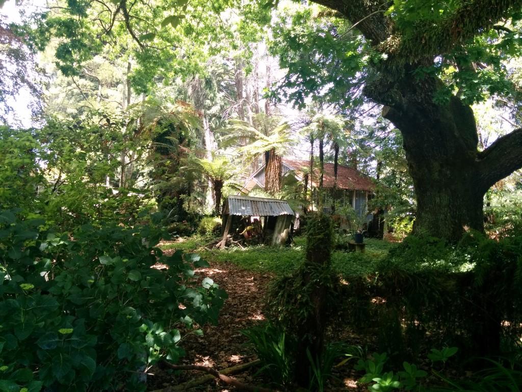 Ein (nicht ganz so) verlassenes Haus mitten im Nirgendwo!