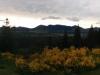 Ein bisschen Sonnenaufgang schaut aber auch noch durch.