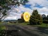Riesen-Kiwifrucht!