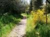 Meine Wanderung durch die spannende Natur beginnt...