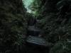 Kleine extrem steile Stufen führen den letzten Weg hoch