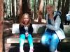 Museum und Redwoods