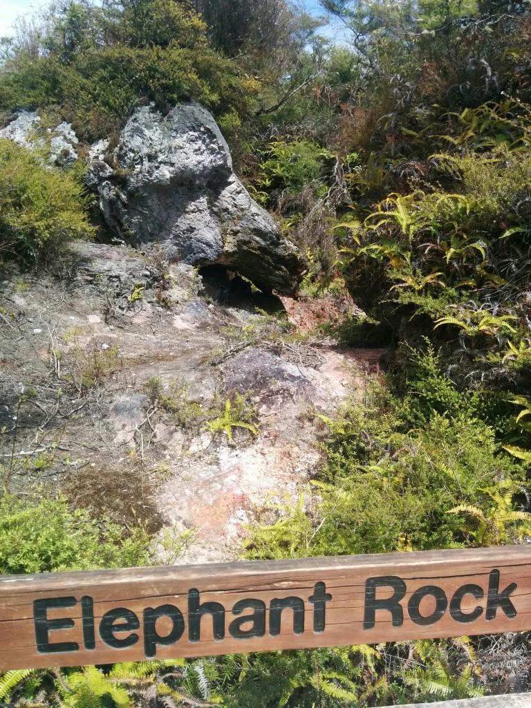 Zum Anfang habe ich den Elefanten nicht gesehen, aber mittlerweile ist es ganz eindeutig ein Elephant Rock!