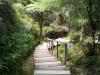 Achtung: Stufen. Und jede Stufe wurde liebevoll dunkel angemalt.