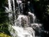 Auch in Rainbow Springs gibt es einen Wasserfall. Ob der natürlicher Herkunft ist wage ich allerdings zu bezweifeln.