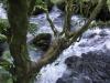 Ein Mini-Wasserfall :D