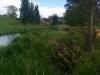 Hier noch beim Whites Road Parkplatz. Auf diesem Baumstamm überm Fluss habe ich ein paar Minuten gesessen und überlegt, ob ich auf das Gute vertraue...