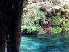 Sanctuary Mountain & Blue Spring