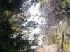 Wasserfall! Das ist der Tarawera Falls Wasserfall. Am Ziel angekommen!
