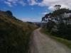 Und hier gehts wieder auf Maunganui zu