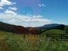 Im Hintergrund dann überall Berge... es sieht aus wie im Paradies. Ich bin ein Fan der Nordinsel.