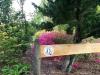 Ankunft im Kuirau Park in Rotorua