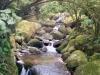 Wasserfall Jr. ;)