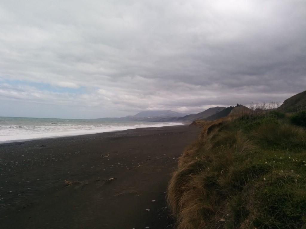 Das erste mal Küste nach Aufbruch aus Picton.