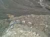 Ich stehe auf der Böschung und unten ist der Sand. Der vor kurzem scheinbar noch im Wasser lag (es gibt hier massiv Ebbe und Flut).