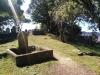 Ein kleiner Friedhof direkt neben der Universität... skurril aber hübsch
