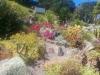 Hier ist der Kaktusgarten