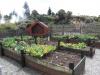Die Kinder haben ein Gartenprojekt. Gerade wird hauptsächlich kompostiert.
